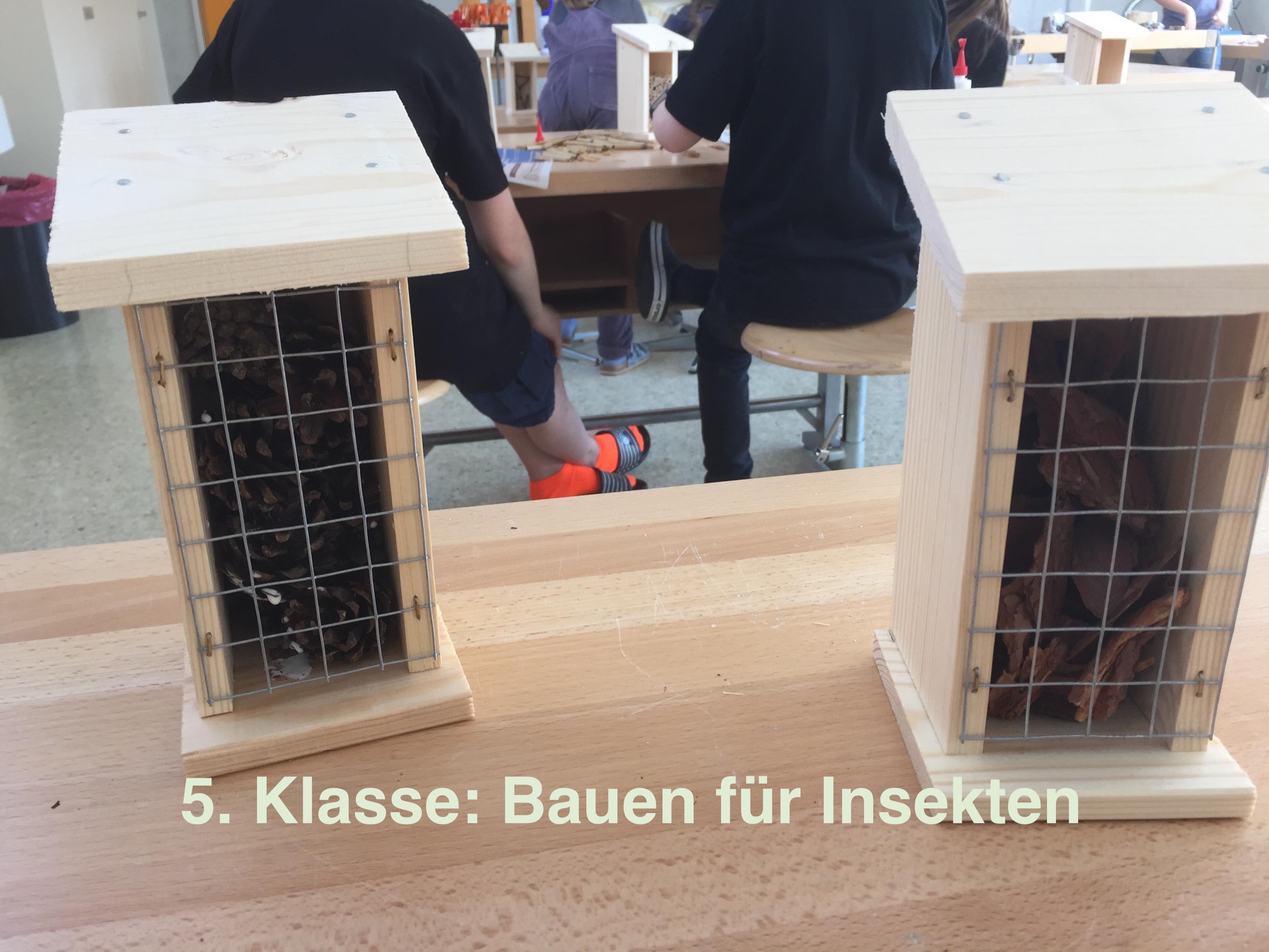 https://primarschule-steinmaur.ch/wp-content/uploads/2019/04/I_01-Copy.jpg